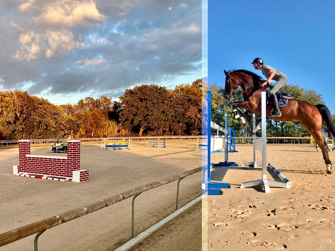 Jumping & Dressage Clinic